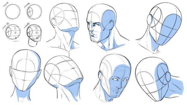 How to Draw Heads at Various Angles - Reference by robertmarzullo