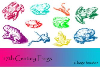 17th Century Frogs by TD-Brushes