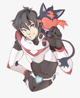 Pokemon Paladin Trainers: Keith and Litten