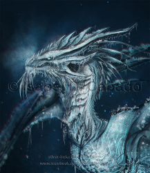 The ice dragon: Head detail by Silver-Iruka
