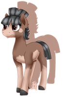 749 Mudbray ADOPTABLE