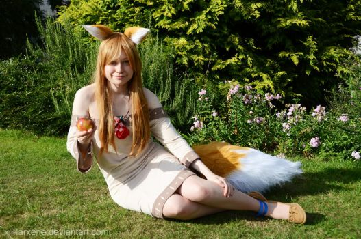 Horo / Holo Cosplay Spice and Wolf by XII-Larxene