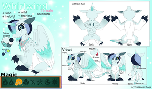 Whirlwind Ref sheet by TheWarriorDogs
