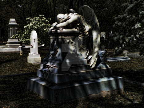 Weeping Angel by Moonlight by Sherrys-Camera