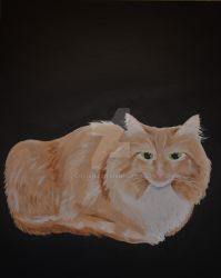 Le Chat Orange Et Blanc by lizliadis