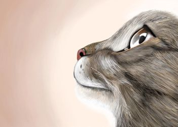 Feline Thoughts by sketchableapp