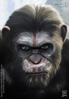 Caesar from Planet of the Apes by gokhankalafat