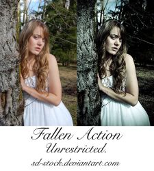 Fallen Action by sd-stock