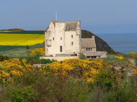 Ballone Castle, Easter Ross by piglet365