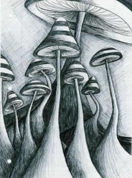 Shrooms by maddhatter420