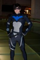 Nightwing by InsertWittyWords