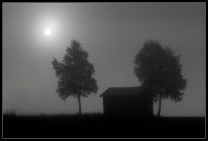 Moody Morning by Basement127