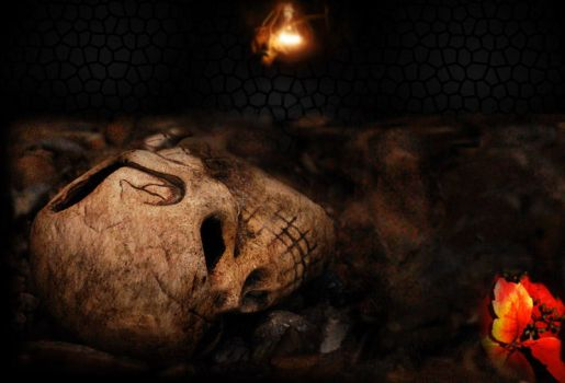 death and life by Jamel
