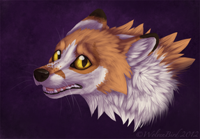 Timid by WolvenBird