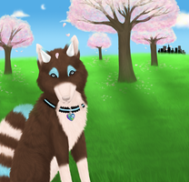 Calm Under The Blossom. by Ithfifi