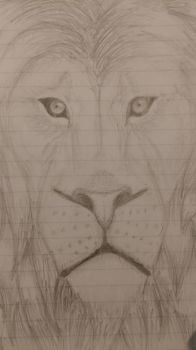 Lion Sketch by MaximusTheMillion