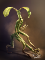 PICKETT THE  BOWTRUCKLE by Emmanuel-Oquendo