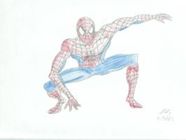 Your Friendly Neighborhood Spider-Man by PeterSFay