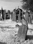 Glasnevin Cemetery III by CadenReid