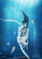 lady in the water by candra-cj