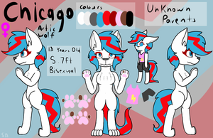 (Commission 117) Furry Chicago Ref Sheet by Serenea-Artz