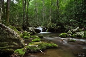 Roaring Fork Smoky Mountains National Park by tt83x