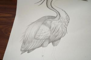 Purple Heron WIP2 - Body by MaryOfExeter