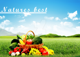 Natures best vegetables and fruits by mshafimd
