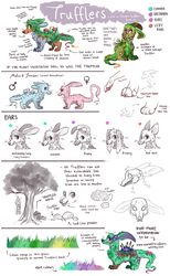 TRUFFLERS - Full Species Guide by Fayven