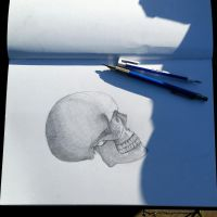skull drawing by desenez88