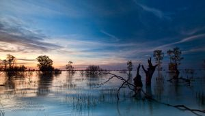 Magic of Menindee by FireflyPhotosAust