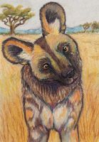 ACEO: Hi There! by DanielleMWilliams