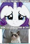 MLP with grumpy cat by XXspiritwolf2000XX