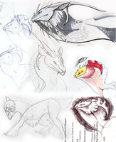 Sketch dump by Xainra