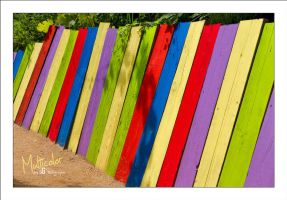 Multicolor by sG-Photographie