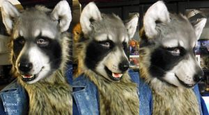 Raccoon W/Makeup by Magpieb0nes