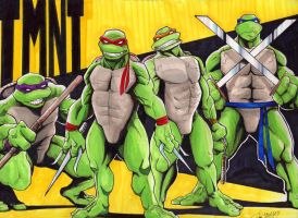 TMNT Color by LangleyEffect