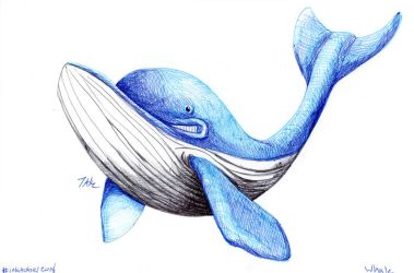 Daily Sketch: Whale by Hunchy