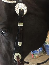 Show bridle stock 2 by Stripe13