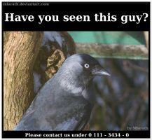 Have you seen this guy? by Miarath