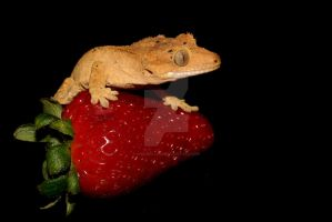 Feeling fruity 2 by AngiWallace