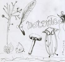 sketch ink Botanicula by Draconica5