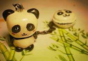 Pandas are awesome by SteamBerry