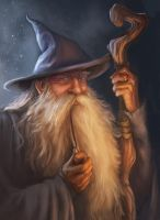 Gandalf the Grey by koledarche