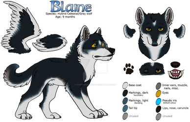 [Reference Sheet] Blaine 2018 by nightangelwolf