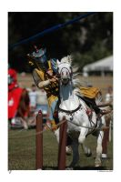 jousting - unseated by MarkGreenmantle