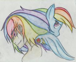 Rainbow Dash back to back by fillyfeill