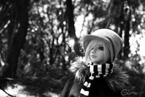 BJD: Tiny Friends by cindre
