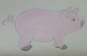 Pig Drawing by jcpag2010