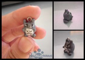 :Another Clay Totoro: by PrePAWSterous